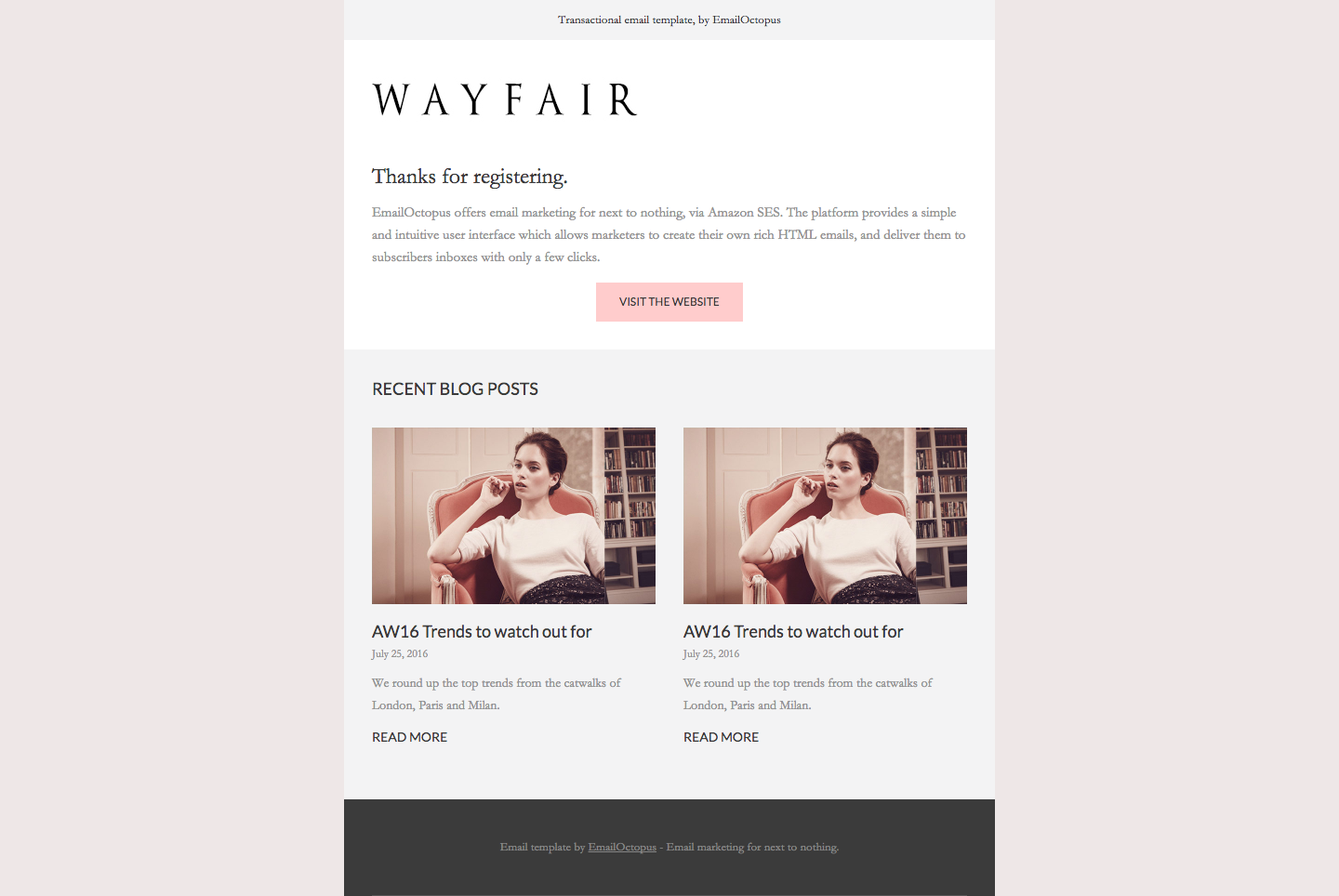 screencapture-file-Users-Tom-Documents-EO-Wayfair-20by-20EmailOctopus-textemail-html-1466690039186