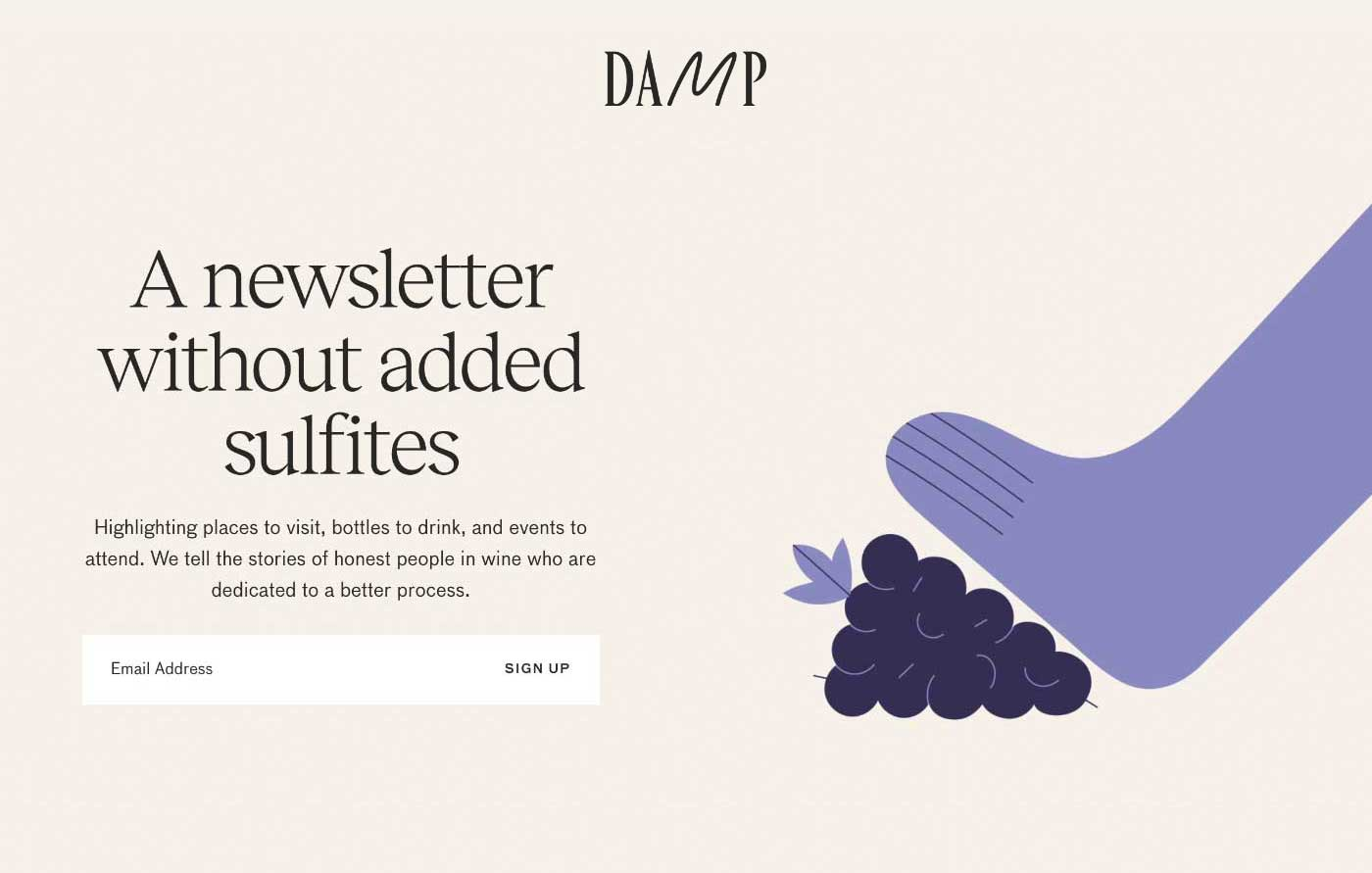 Screenshot of the newsletter landing page from Damp