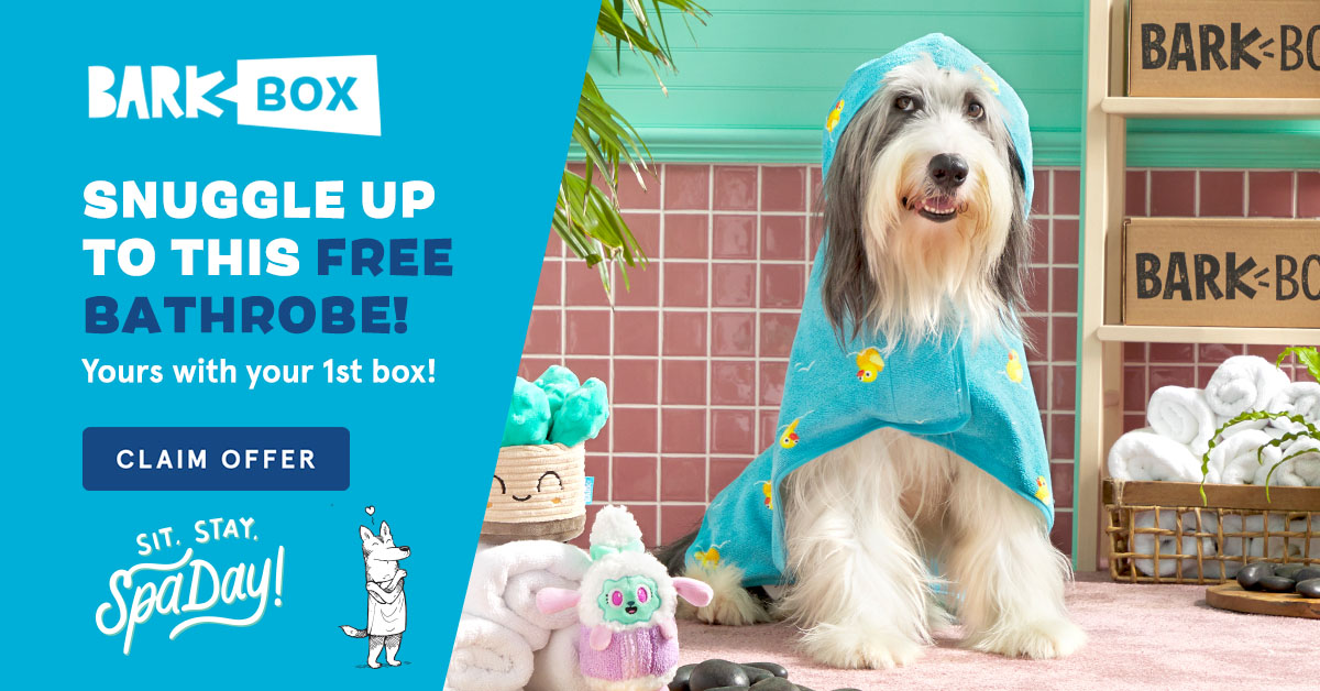 Example of humour used in email marketing from BarkBox
