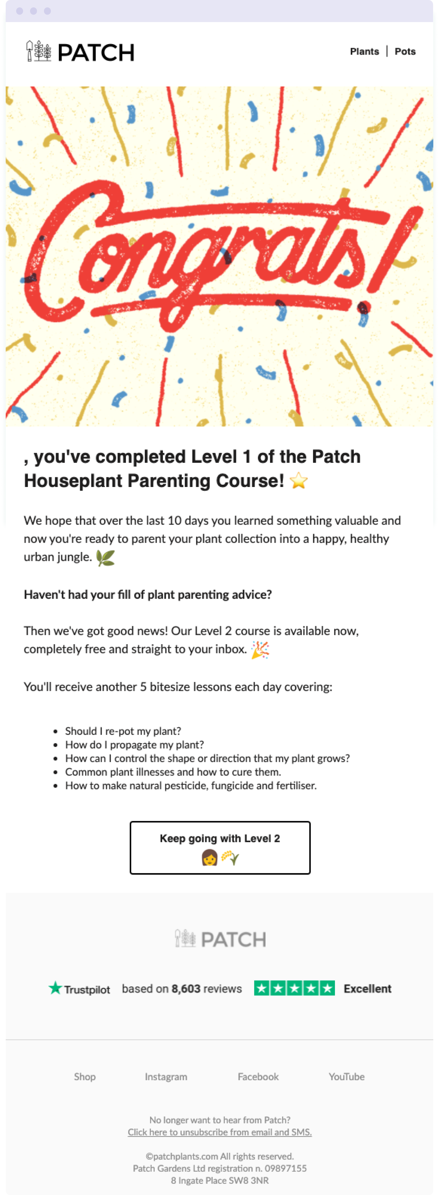 The final email in the Patch Plants' Houseplant Parenting email course – a great example of how to deliver even more value to your audience