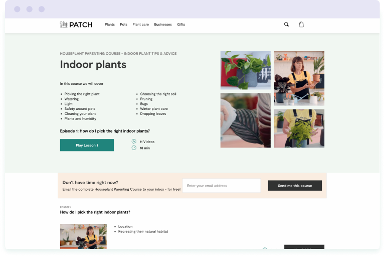 Image of the Patch Plants Houseplant Parenting email course landing page