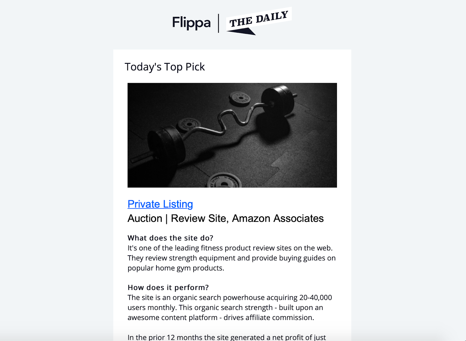 Example of a newsletter from Flippa