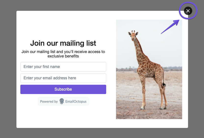 Image showing how distinct the exit buttons on EmailOctopus pop-up forms are to help with UX