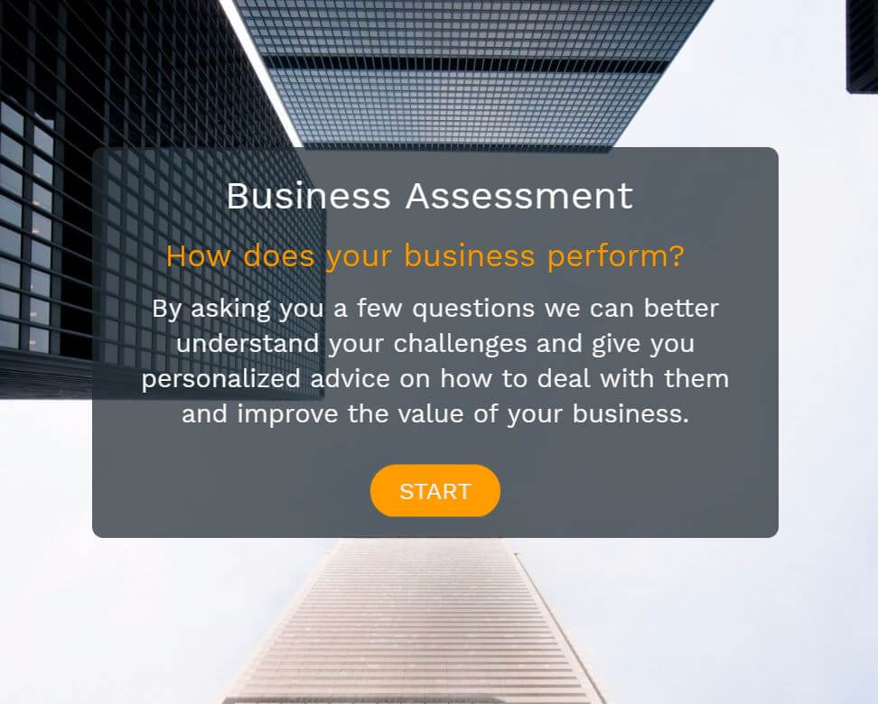 Example of a business assessment used by B2B to attract and qualify leads
