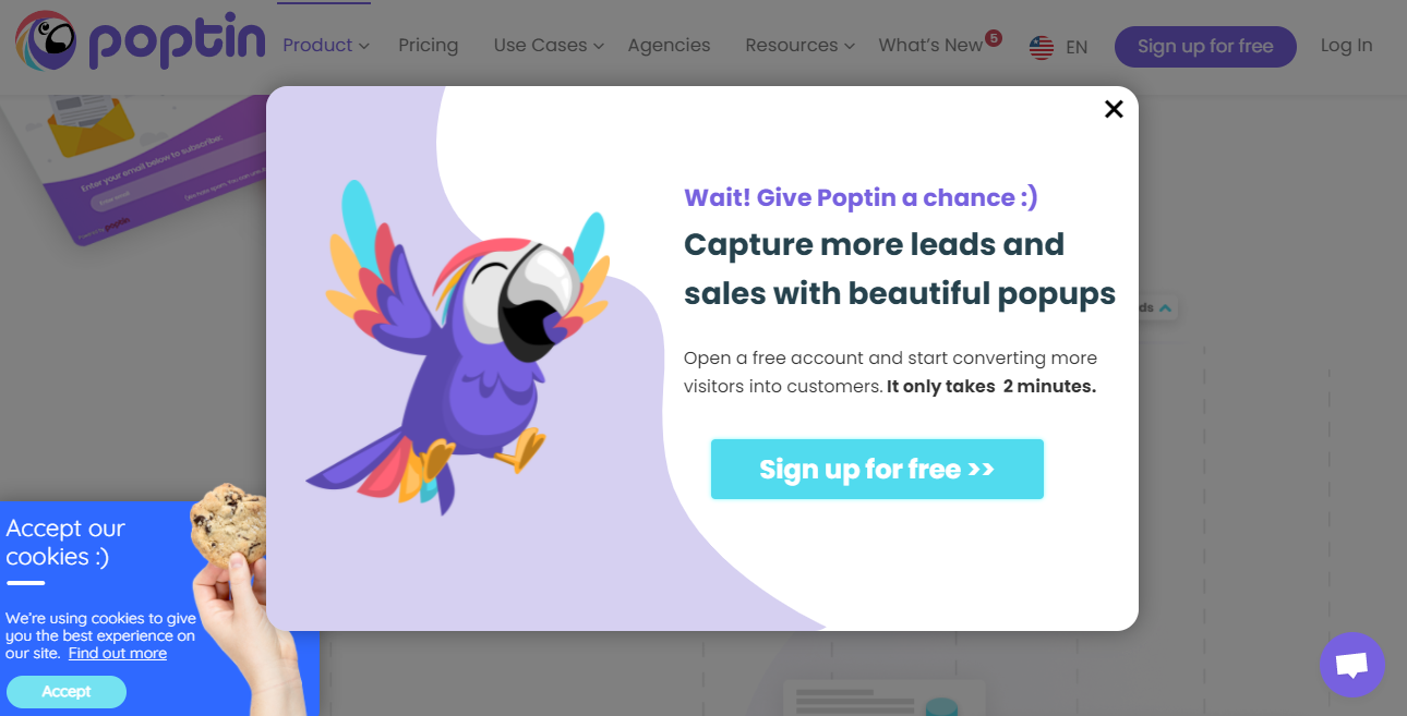 Example of a pop-up form that can be used on your website to convert visitors into subscribers